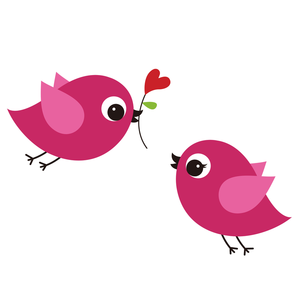 bird lover dating